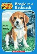 Animal Ark 45 Beagle in a Backpack