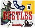 Beetles With Real Beetle Encased in Plastic