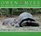 Owen & Mzee The True Story of a Remarkable Friendship
