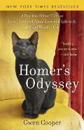 Homer's Odyssey Cover