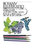 Botany Illustrated Introduction To Plants