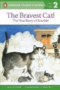 Bravest Cat True Story Of Scarlett