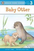 Baby Otter