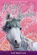 Magic Ponies 02 Special Wish