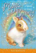 Magic Bunny #03: A Splash of Magic
