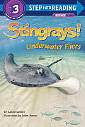 Stingrays! Underwater Fliers (Step Into Reading. Step 3)