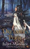 Blackthorn & Grim #1: Dreamer's Pool: A Blackthorn & Grim Novel