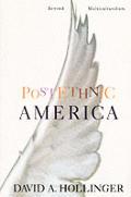 Postethnic America Beyond Multiculturali