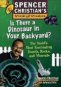 Is There a Dinosaur in Your Backyard?: The World's Most Fascinating Fossils, Rocks, and Minerals (Spencer Christian's World of Wonders)