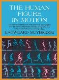 The Human Figure in Motion Cover