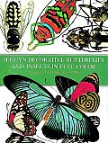 Seguys Decorative Butterflies & Insects