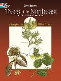 Trees of the Northeast Coloring Book