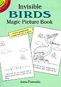 Invisible Birds Magic Picture Book
