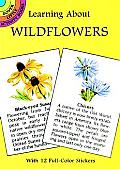 Learning about Wildflowers [With Wildflower Stickers]