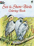Sea and Shore Birds Coloring Book