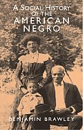 Social History Of The American Negro