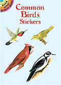 Common Birds Stickers (Dover Little Activity Books)