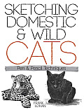 Sketching Domestic and Wild Cats: Pen and Pencil Techniques (Dover Art Instruction)