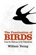 Fascination of Birds From the Albatross to the Yellowthroat