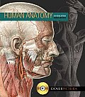 Human Anatomy [With CDROM]
