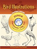 Bird Illustrations CD-ROM and Book Cover