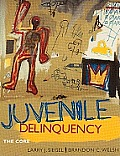 Juvenile Delinquency : the Core (4TH 11 - Old Edition)