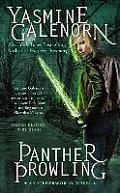 Otherworld Novel #17: Panther Prowling