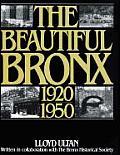 Beautiful Bronx