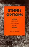 Ethnic Options Choosing Ethnic Identitie