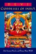 Comparative Studies in Religion and Society #7: Devi: Goddesses of India Cover