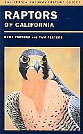 California Natural History Guides #82: Raptors of California