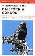 California Natural History Guides #81: Introduction to the California Condor Cover