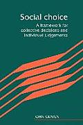 Social Choice: A Framework for Collective Decisions and Individual Judgements