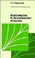 Introduction To The Mathematics Of Neurons
