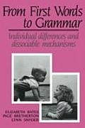 From First Words to Grammar: Individual Differences & Dissociable Mechanisms