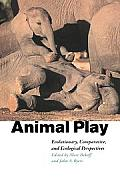 Animal Play: Evolutionary, Comparative and Ecological Perspectives