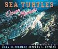 Sea Turtles Ocean Nomads