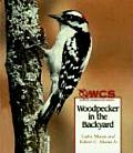 Woodpecker in the Backyard (Wildlife Conservation Society Books)