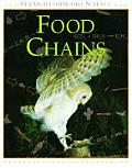 Food Chains Straightforward Science
