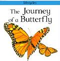 The Journey of a Butterfly