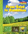 From Seed to Dandelion (Scholastic News Nonfiction Readers: How Things Grow--New Sub)