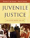 Juvenile Justice The System Process & Law