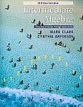 Intermediate Algebra : 2010 Class Test Edition (11 Edition)