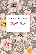 Devil Water A Novel