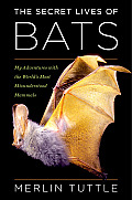 Secret Lives of Bats My Adventures with the Worlds Most Misunderstood Mammals