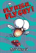 Fly High Fly Guy