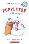 Poppleton In Winter Level 3