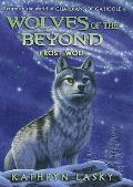 Wolves of the Beyond 04 Frost Wolf
