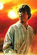 Luke Skywalker Bio (Star Wars) Cover