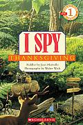 I Spy Thanksgiving